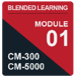 IC_BL-CM-5_Mod1