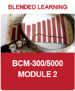 IC_BCM_Module 2